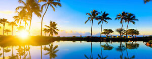 Timeshare through Shell Vacation Resorts