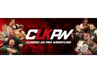 Looking for a group of business partners or investors 4 wrestling organization