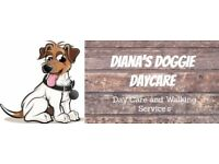 Diana's Doggie Day Care