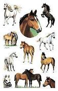 Pferde Sticker
