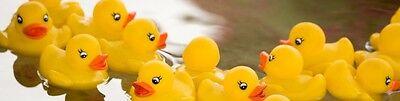 Duckydaddles