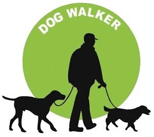 Dog Walker Scarborough Scarborough Stirling Area Preview