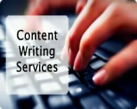 Essays and Assignments Help +1(587)773-3140