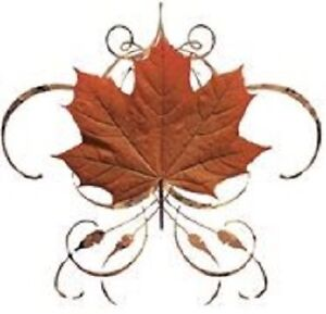 Fall Clean Up / Eavestrough Cleaning Kitchener / Waterloo Kitchener Area image 1