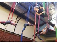 An Intro to Aerial Fitness - Trapeze, Hoop + Silk