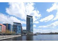 **An immaculately presented large one bedroom property on the Western Gateway E16 with river views**