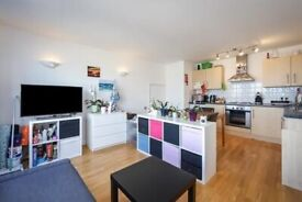 SPACIOUS ONE BEDROOM APARTMENT-POPULAR VISTA BUILDING-MOMENTS FROM WOOLWICH ARSENAL STATION-CALL NOW
