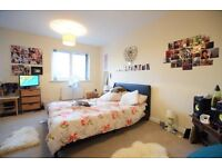 4 double bedrooms with private garden in peckham!!!