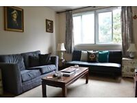 SPACIOUS & CHEAP ONE BEDROOM APARTMENT NEAR PUTNEY STATION - COMES WITH SECURE PARKING!