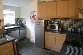 4 bedroom in peckham available now