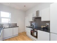 Newly renovated split-level apartment with a stylish living space over first & second floors- SW16
