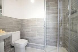 Newly Refurbished 4 Double Bedroom Apartment A Stroll From Streatham Hill Station