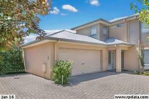 Room to rent in Adelaide - close to the city and Glenelg Kurralta Park West Torrens Area Preview