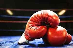 Macs Boxing Glebe Inner Sydney Preview