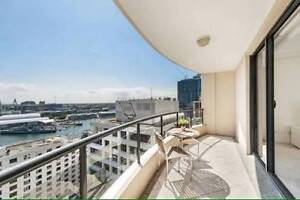 Amazig Harbor view accomodation. FEMALE Sydney City Inner Sydney Preview