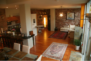 Beautiful loft style apartment with attached garage (Fairview) -