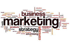 Marketing and administration professional available Henley Brook Swan Area Preview