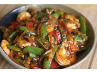 South and North Indian female home cook