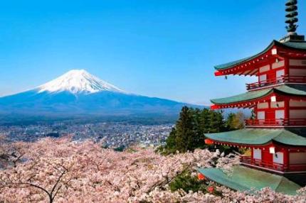 🎌 Japanese tutoring  from native speaker 🎌