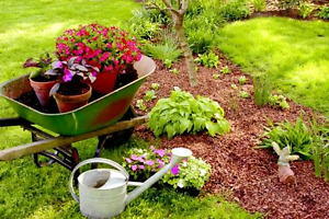 Gardening services available Joondalup Joondalup Area Preview