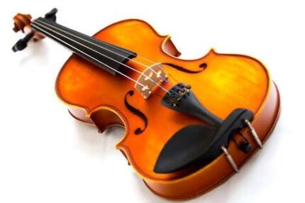 Violin lessons wanted Carisbrook Central Goldfields Preview