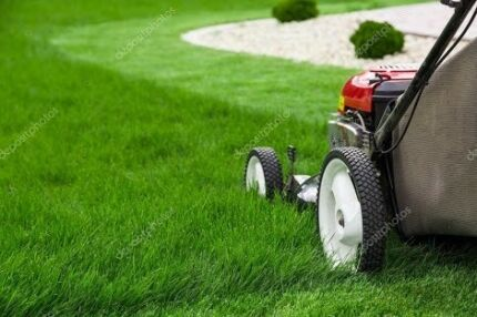 Lawnmowing Business for Sale