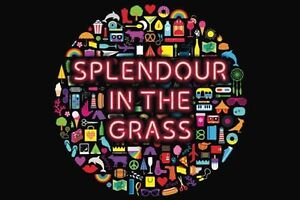 WANTED: Splendour Ticket One Day! Coolangatta Gold Coast South Preview