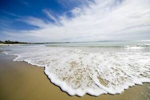 WANTED: Noosa Holiday Accom over Xmas Noosa Heads Noosa Area Preview