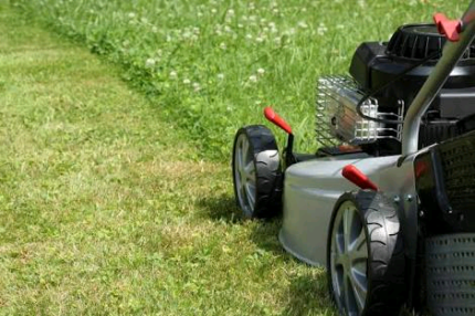 Lawn mowing and rubbish removals and more