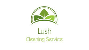 Professional cleaning service  Cambridge Kitchener Area image 1