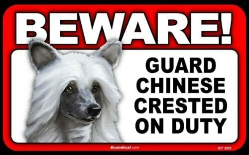 BEWARE Guard Chinese Crested On Duty Dog Laminated Warning Sign USA Made