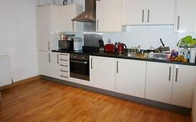 Stunning large 1 bedroom flat near to Train Station