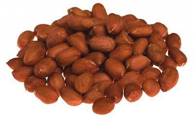 Nutripeck Peanuts 12.5kg