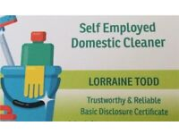 Cleaner (Dunfermline Areas)
