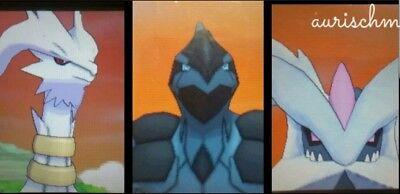 Pokemon all 3 shiny Reshiram Zekrom Kyurem lvl 100 6IV Sun/Moon Ultra Home trade