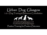 1-2-1 Dog Training and Behaviour in Glasgow
