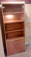 SOLD PPU display cabinet with light