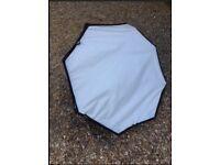 Lastolite hotrod octa soft box for photography