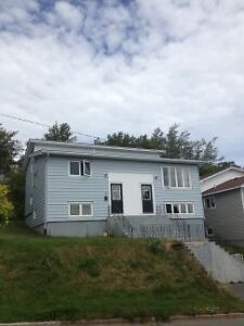 8 Weymouth St - A walk to MUN! 3 BEDROOM, w/d included!