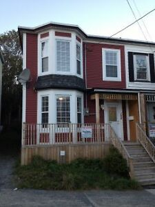 108 Springdale Street-Charming Executive 3 bedroom downtown home