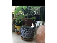 Blue Japanese Plant Pot - small