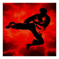 Private Martial arts training & cardio kickboxing