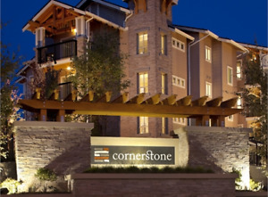 Immaculate 1 Bedroom condo - Cornerstone Langley
