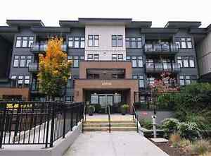 Langley Downtown Condo in the heart of the city.