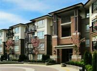 Close to downtown *MAPLE RIDGE* 4th floor