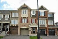 Absolutely Gorgeous 3Bedroom, 3Bath freehold Townhouse.