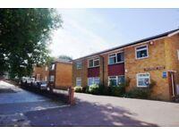 Large two double bedrooom garden flat, East Finchley, N2 - £365.00 per week