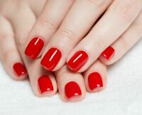 Shellac Manicure and Shellac Pedicure for only $65