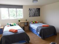 HUGE TWIN ROOM! Only 5 min from Willesden Green (zone 2)!