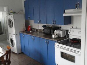 Big renovated 6 1/2, 4 bd, Hochelaga de Maisonneuve